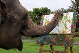 Gajah belajar melukis