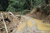 Poros jalan Sanginora-Napu  sudah bisa dilewati kendaraan