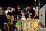 67 ribu ekor burung liar Sumatera berhasil diselamatkan dari upaya penyelundupan