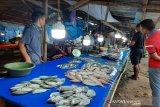 Pascalebaran, harga ikan segar di kendari tinggi
