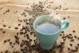 Konsumsi kopi dapat turunkan risiko penyakit batu empedu
