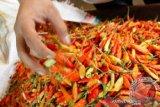 Disperindag Bangka Belitung pastikan stok cabai cukup