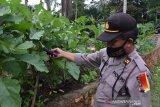 Polres Tanjungpinang ikut bangun ketahanan pangan sambut normal baru