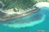 PBB usul Great Barrier Reef Australia masuk daftar kategori 'dalam bahaya'