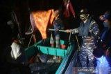 Buaya terkam anak laki-laki di hadapan bapaknya sendiri saat cari daun nipah di perairan Sungsang