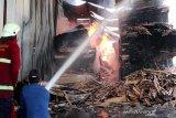 Petugas berjibaku padamkan api kebakaran pabrik kayu lapis