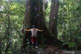 Komunitas adat Indonesia memenangkan Equator Prize 2020 dari PBB