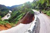 Jalan Jambi-Sumbar Rawan Longsor