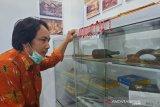 Belum ada museum di Gumas, benda bersejarah disimpan di kantor Disbudpar