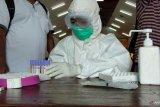 Gugus Tugas Kota Sorong kirim 182 sampel tes COVID-19 ke Laboratorium Makassar