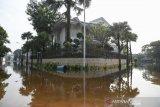 BNPB sebut Sejumlah wilayah di Jawa terendam rob