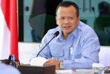 Menteri Edhy ungkap potensi keuntungan dalam berbisnis udang