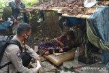 Anggota TNI-Polri bantu ibu melahirkan di semak-semak