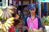 Pedagang pisang ikhlas menerima pembatalan haji akibat COVID-19