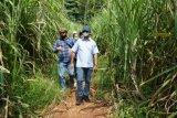 Pemerintah optimistis investasi jalan di tengah pandemi COVID-19