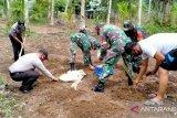 TNI-Polri di Sangihe buka lahan untuk tanaman jagung