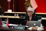 Menlu RI mengajak OKI bersatu menolak aneksasi Palestina oleh Israel