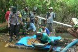 Pemkab Kolaka bentuk tim pantau temuan emas di desa Tanggetada