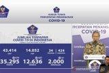 Update COVID-19 di Indonesia :  12.636 orang sembuh dan 35.295  kasus positif