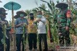 Gubernur Sumbar apresiasi kepolisian ikut jaga ketahanan pangan