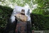 Patung Raja Leopold II di Brussels dicopot oleh sejumlah aktivis