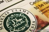 MUI: COVID-19 tidak hentikan proses sertifikasi halal