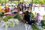 Harga sejumlah bahan kebutuhan pokok di Pasar Phara Sentani normal