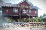 Betang wisata Pantai Ujung Pandaran dipasangi siring darurat tunggu pembongkaran
