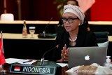 Kembangkan vaksin COVID-19, Indonesia dorong ASEAN-Rusia kerja sama