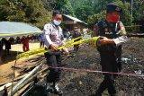 Ditinggal ke kebun, rumah warga di Bartim ludes terbakar