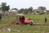 Ekspor Lampung melalui GRATIEKS didukung Kementan