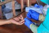 Lebih dari 50 persen pasien COVID-19 di Palangka Raya dinyatakan sembuh
