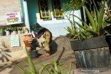 Dusun Bantek NTB menjadi percontohan penerapan protokol COVID-19