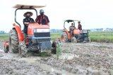 Karantina Pertanian Lampung dukung program gerakan percepatan olah tanah dan olah lahan padi