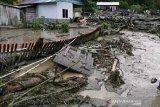 Bencana alam di Sulteng  fenomena alam atau hutan rusak?