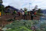 Warga Kiliarma Mimika bersama personel TNI AD gelar tradisi bakar batu