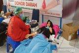 BNN Kendari donor darah guna mengisi stok di PMI