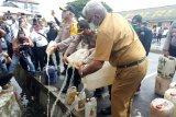 Kapolda Papua pimpin pemusnahan ribuan liter minuman keras sopi