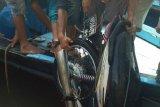 Tega! Seorang anak di Lombok tengah ingin penjarakan ibu kandungnya gara-gara sepeda motor