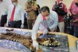 Polisi tangkap empat tersangka perdagangan harimau sumatera