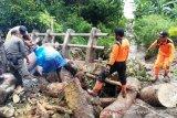 Bersihkan material longsor di tiga kecamatan, Agam minta bantu alat berat Provinsi