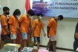 Lima mahasiswa pengguna ganja di Bali ditangkap petugas