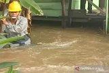 Banjir di Natuna akibat penyempitan sungai