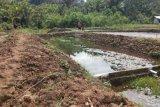 Pemkab Jayapura galakkan program ekonomi gerakan memelihara ikan
