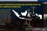 Ahli AS dan Indonesia sebut kerja konservasi butuh gerakan