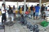 Nelayan tak melaut, aktivitas pelelangan ikan di Cilacap sepi