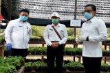 Ibu rumah tangga di Kotim diminta manfaatkan pekarangan bantu ketahanan pangan