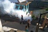 Kasus DBD di Mataram dua meninggal