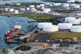 Harga minyak turun juga tertekan lonjakan kasus COVID-19 dan produksi AS