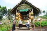 Doni Monardo puji Pemkab Banyuwangi keluarkan sertifikasi protokol kesehatan pariwisata